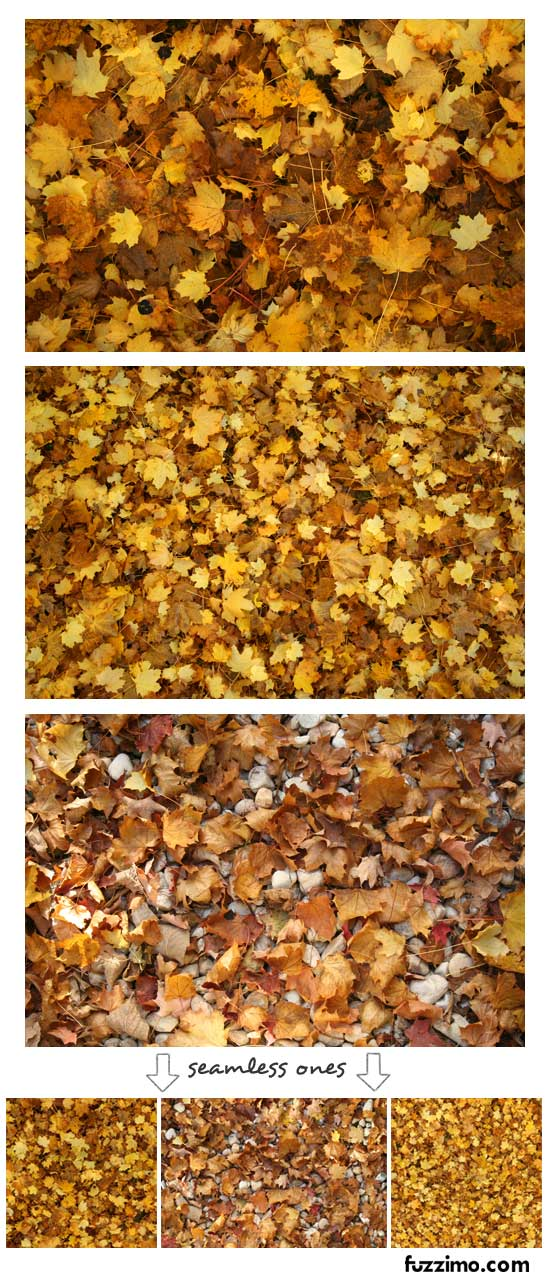 fzm-Autumn Leaves Textures-02