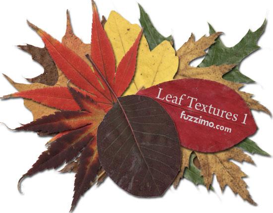 fzm-Leaf-Textures-01