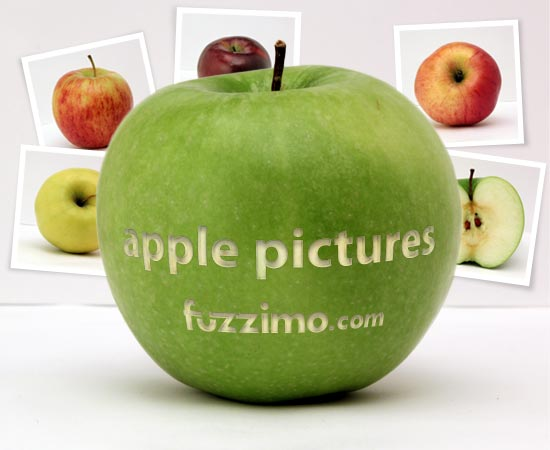 fzm-Apple-Pictures-01