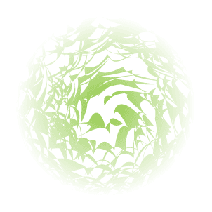 Illustrator Tutorial Mask or Crop Shapes/Paths 12